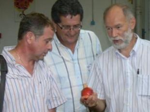 Yves Aris -a l'esquerra- i Dominique Barrau -al centre- durant la visita en una cooperativa de fruita a Illa aquest dimarts. /  FDSEA