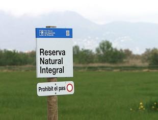 Els límits del parc natural dels Aiguamolls de l'Empordà queden com estaven en la proposta inicial.  MANEL LLADÓ