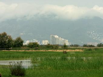 Els Aiguamolls de l'Empordà, amb la urbanització d'Empuriabrava al fons.  M.LLADÓ