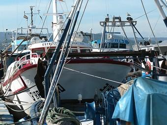 Detall de part d ela flota, amarrada al port. /  ARXIU