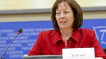 L'eurodiputada gal·lesa Jill Evans, ahir a l'eurocambra. /  ACN