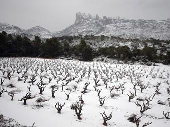 Una vista de la muntanya de Montserrat nevada.  ANDREU PUIG