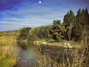 Paratge de la marjal d'Oliva que es reprodueix al calendari d'enguany. /  CEDIDA