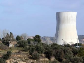 Una imatge dels terrenys agrícoles que l'Ajuntament d'Ascó va adquirir el 2007, amb la nuclear al fons. ACN