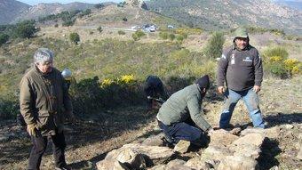 Treballs de millora de suredes al Parc del Cap de Creus.  ARXIU