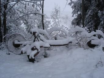 Santa Pau amb neu TURA SOLER