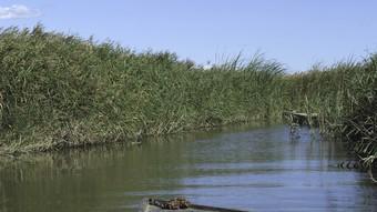 Amb 54 hectàrees, la Bassa de les Olles és la llacuna més petita del parc natural del Delta de l'Ebre.  PATRONAT TURISME L'AMPOLLA