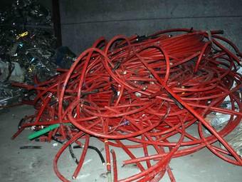 Part del material que ha estat recuperat pels Mossos d'Esquadra.  CME