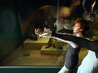 Un exemple d'espectacle en un museu en una edició anteel puntrior.