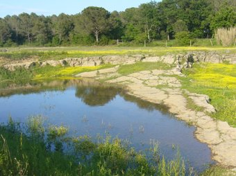 Aspecte de la llacuna de Fontcoberta, dimarts a la tarda.  R. E