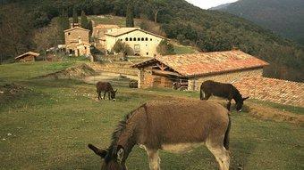 El conjunt de Colldecarrera presideix la vall de Carrera i fa de punt d'inflexió cap a la del Bac.  MANEL LLADÓ
