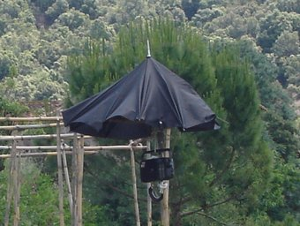 Un hort de Santa Pau, la Garrotxa. Tura Soler