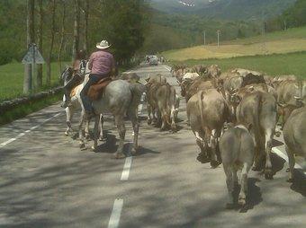 Una imatge de la ruta que s'ha fet de l'Empordà al Ripollès.