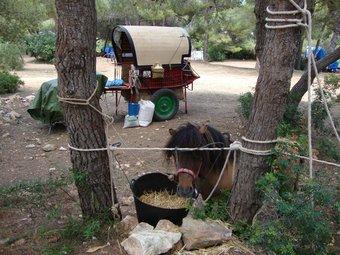Moment de descans de la Volta al Parc d ela Vallesa de Calp. /  CEDIDA