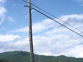 Un pal de telefon després de l'acció dels lladres, a Santa Pau, al pla on hi ha la Pedra del Diable. TURA SOLER