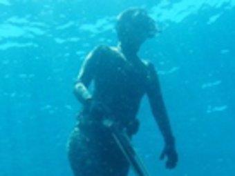 Cada vegada hi ha més infractors en el camp de la pesca submarina.