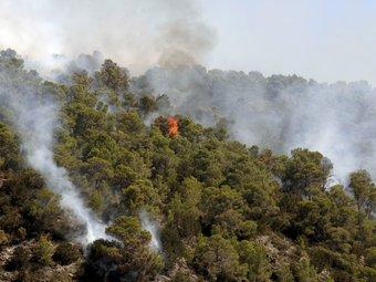 Fum i flames en l'incendi d'Eivissa que continua cremant sense control EFE