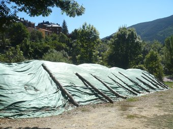 La biomassa a cobert que hi ha a Planoles. J.C