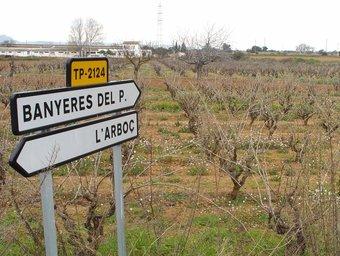 Terrenys que es podrien veure afectats pel projecte del Logis ARXIU