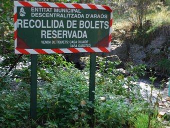 Un dels indicadors que els boletaires es troben a Araós, al Pallars Sobirà, i que obliguen a pagar un tiquet per collir bolets als seus boscos M. LLUVICH / ACN