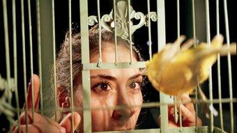Artemis Stavridi observa un dels canaris reclosos en les gàbies que pengen a l'escenari en aquesta peça. J.P. STOOP