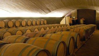 Els cellers d'Álvaro Palacios són un dels símbols de l'enlairada vinícola i econòmica del Priorat R.L