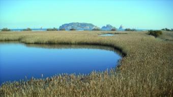 Vista de les illes Medes des de la llacuna del Ter Vell (punt número 7 de l'itinerari de descoberta).  ANG