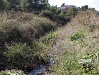 Un tram de la riera de Cantallops a Avinyonet del Penedès, un dels municipis on també es fan abocaments A. PUIG