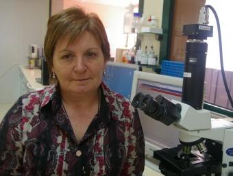 Maria Àngels Rial, al laboratori del centre d'inseminació del grup a Cardona.  J.TORRENTS