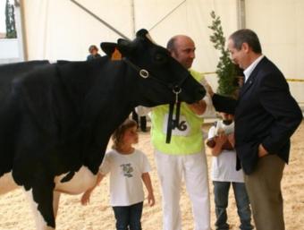Felip Puig fent entrega del premi Vaca Gran Campiona, a la granja Can Pou de Parlavà. EL PUNT