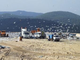Els camions avoquen els fangs sense tractar de les depuradores. ARXIU
