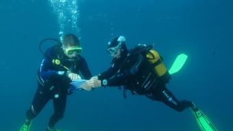 Submarinistes fent immersió al fons marí de la Costa Vermella.  WWW.GRANDBLEU.FR