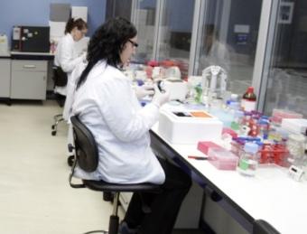 Un laboratori on es fa recerca en fàrmacs contra l'alzheimer.  ARXIU