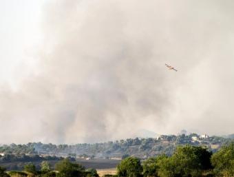 L'incendi entre Santa Margalida i Maria de la Salut està controlat EFE