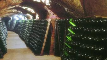 Interior d'una cava d'una dels 254 empreses productores d'aquest producte registrades a Catalunya ARXIU