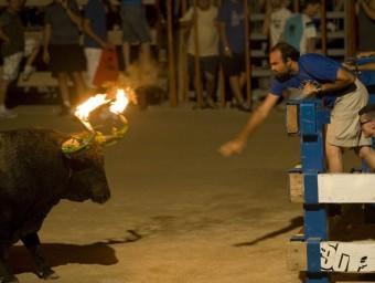 El bou embolat és una de les modalitats més criticades per les protectores. J.C.LEÓN