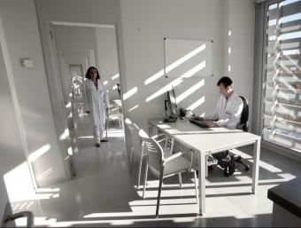 Un metge atén consulta en un centre de salut.  EL PUNT AVUI