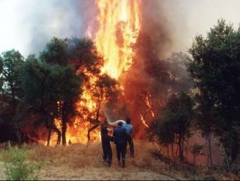 Uns bombers treballen per apagar l'incendi del Bages i del Berguedà del 1994 ARXIU / MIQUEL ANGLARILL