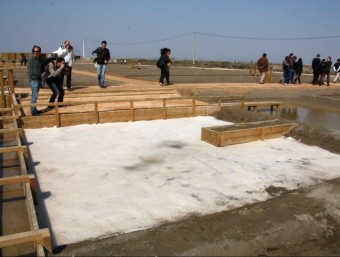 Una bassa amb sal cristal·litzada al complex ambiental de les antigues salines de Sant Antoni. ACN