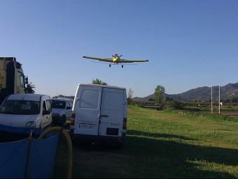 La fumigació als espais naturals del delta de l'Ebre es fa des d'una avioneta. EL PUNT AVUI