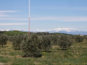 Finca on es vol construir un miniparc eòlic, en el terme municipal de Torroella de Fluvià. JOAN PUNTÍ