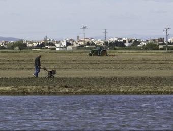 Una finca del Delta parcialment inundada, en deu dies tots els camps estaran negats. JOSÉ CARLOS LEÓN