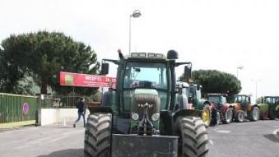 Els tractors de la Salanca davant el palau de les exposicions J.M. ARTOZOUL