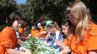 Un moment de la preparació del collage amb fulles que van realitzar ahir els escolars de Figueres en el marc de la Festa de l'arbre. JOAN SABATER
