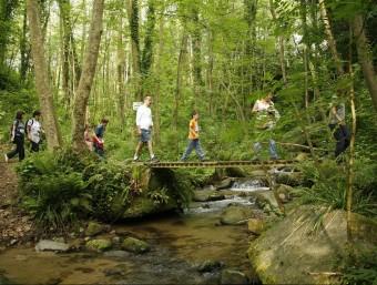 El Montseny és un espai ideal per al senderisme. EL PUNT