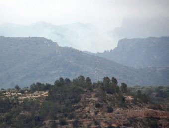 Una columna de fum s'eleva des de la serra de Cardó-Boix, el front més actiu de l'incendi de les Terres de l'Ebre ACN