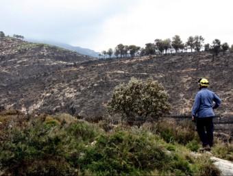 L'incendi de la serra de Cardó i del Boix va cremar una superfície de més de 3.000 hectàrees en tres dies i mig. ACN
