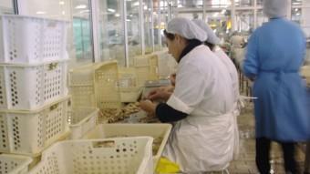 Unes treballadores de la indústria conservera de Vigo.  ARXIU