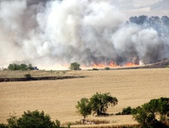 El foc es va declarar en uns terrenys d'ús agrari probablement pel pas d'un vehicle que revisava les línies elèctriques ACN