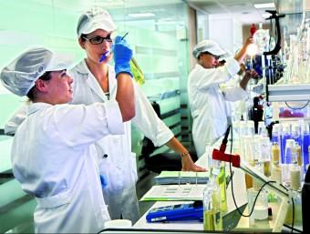 Un grup de 25 persones treballant en el departament de R+D+I que Maverick té a Ulldecona  L'ECONÒMIC